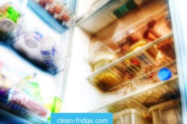 store food in the fridge